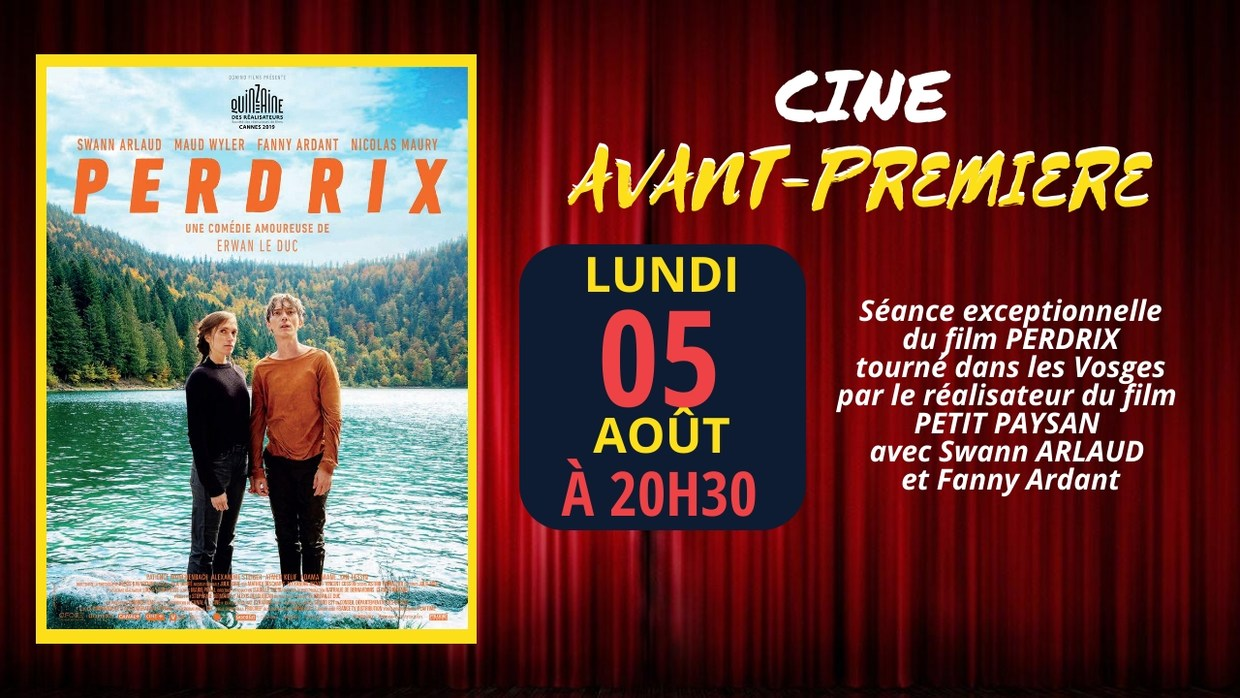 Photo du film Perdrix
